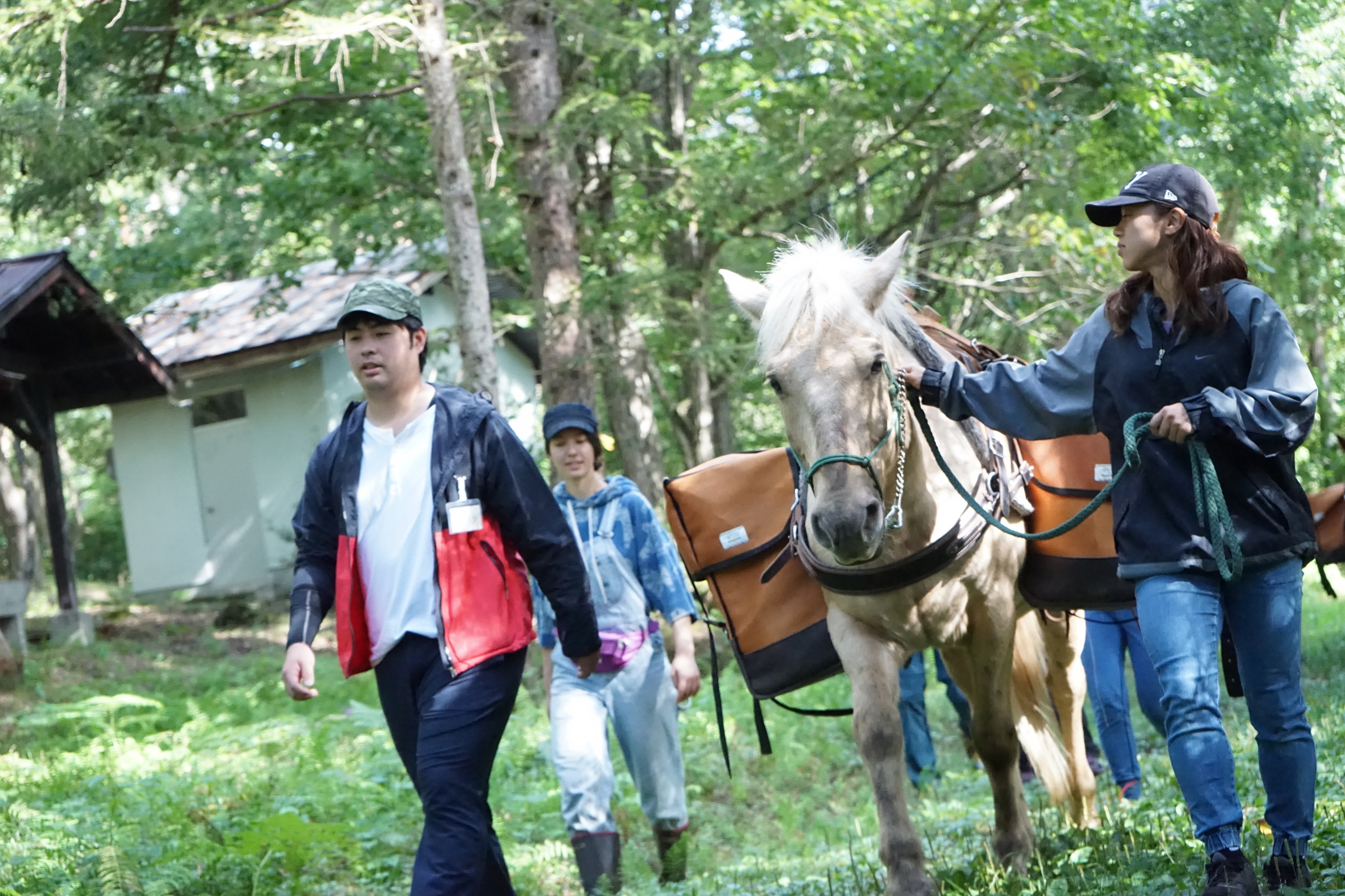アファンの森での森林セラピー・ホースセラピー体験