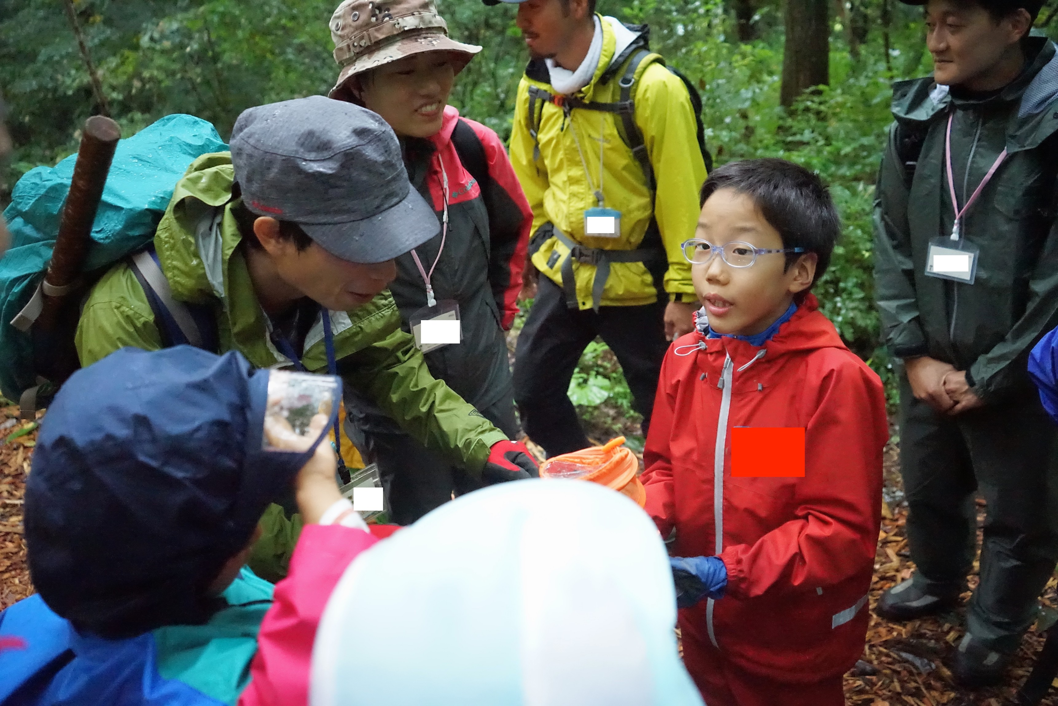 ありのままの子どもを受け入れる自然・アファンの森