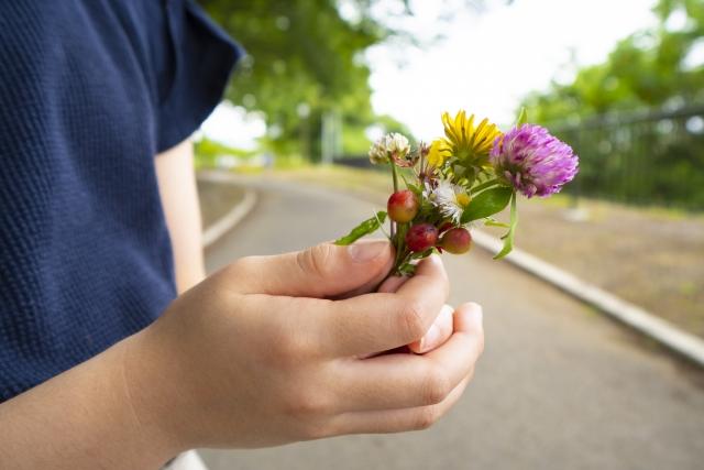 プレゼントの花を集める子ども